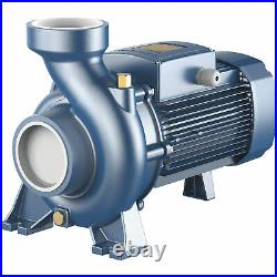 Pedrollo Centrifugal Water Pump 19,020 GPH, 3in. Ports, Model# HFm6A